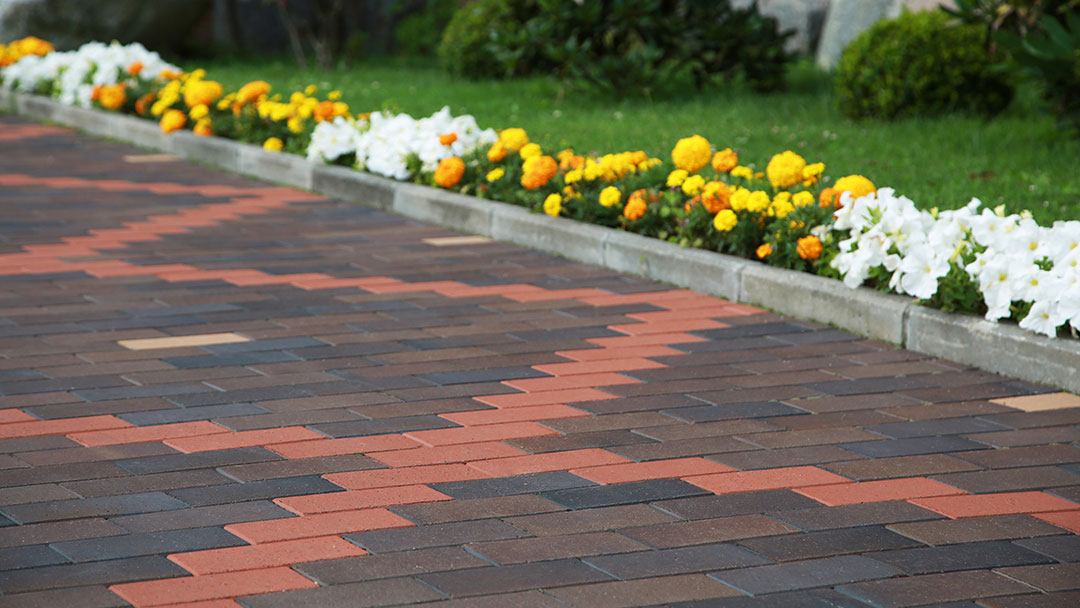 Kill Moss Mould And Lichen On Driveway And Path Order Online